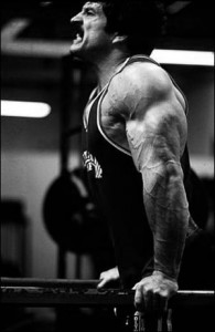 Mike Mentzer dipping