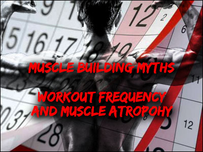 Muscle Building Myths: Workout Frequency and Muscle Atrophy